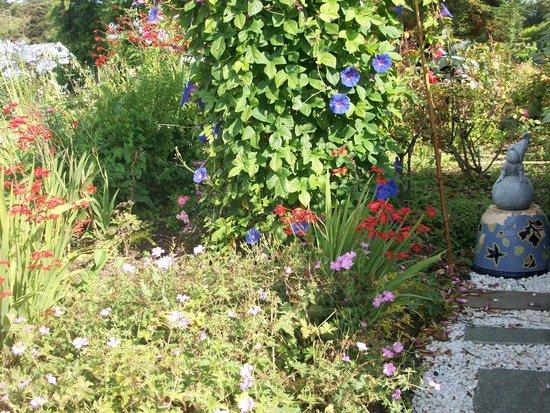 Le Clos de Canaplaye : le jardin