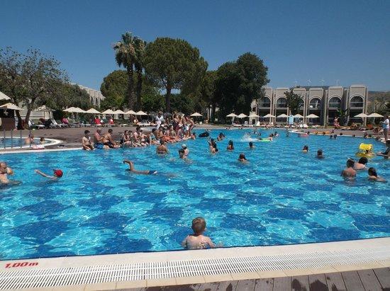 Aurum Spa & Beach Resort: Pool area