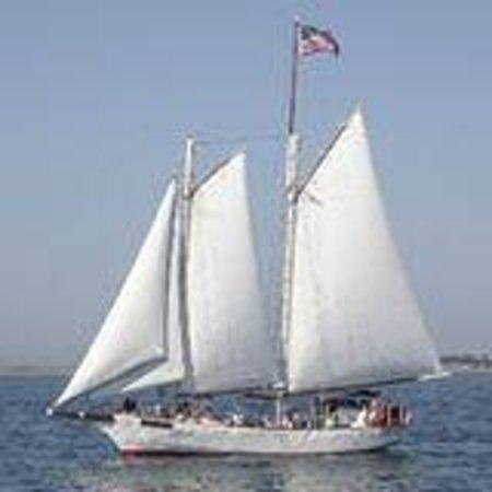 Schooner Bay Lady II from Macmillan's Wharf