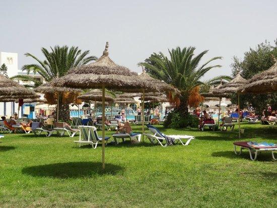 Ramada Liberty Resort Hotel : Verdure Plage Piscine
