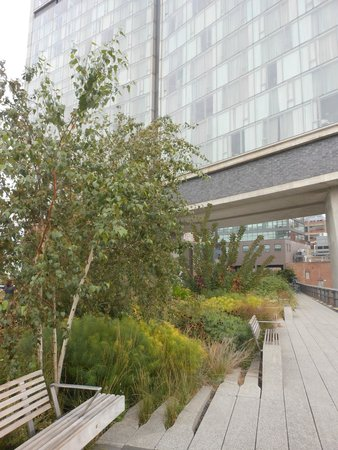 The High Line Park follows the path of the old elevated line, including going through some build