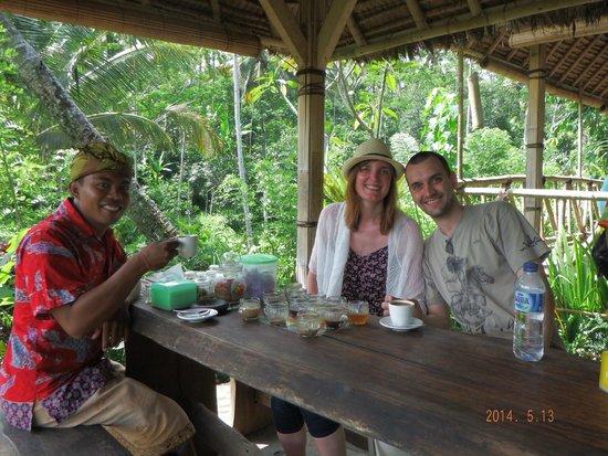 Bali Traditional Tours - Day Tours: Coffee plantation