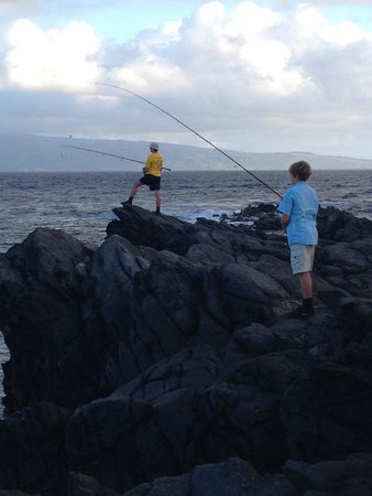 Maui shore fishing guides lahaina all you need to know for Shore fishing maui