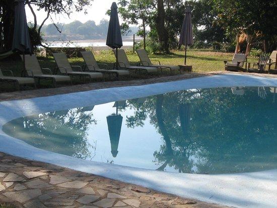 Croc Valley Camp: Pool