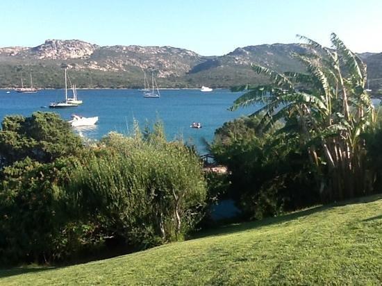 Park Hotel Cala di Lepre & Spa: vista dalla piscina