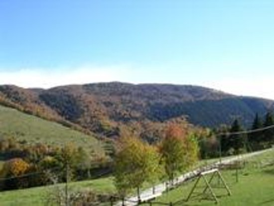 Albergo Alpino: parco giochi