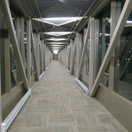 Kiju's : the walkway from the hotel