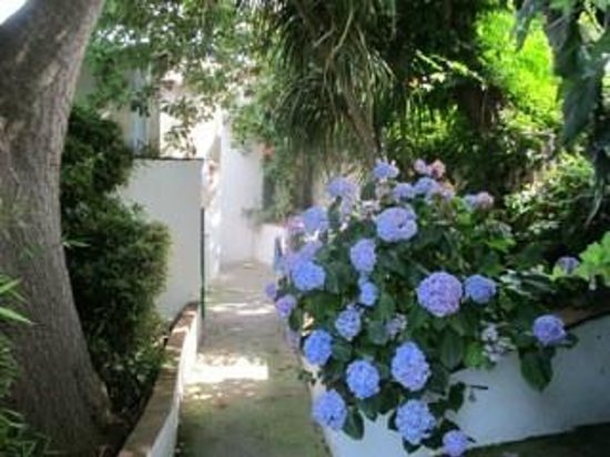 La Rosa dei Venti: Flowers line walkways between the cottages