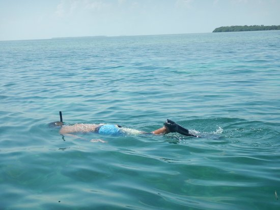 Take Me There Charters: Snorkeling