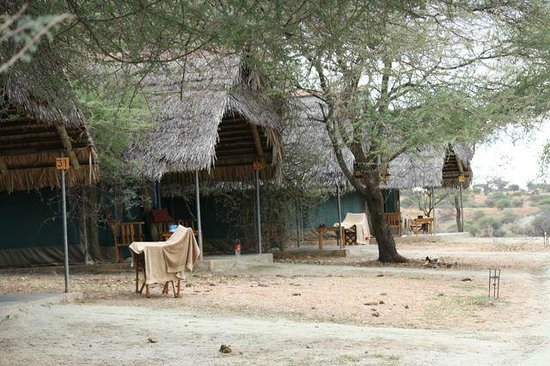 Tarangire Safari Lodge: Tents