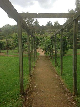 Fletcher Moss Park & Botanical Gardens: Lovely garden !