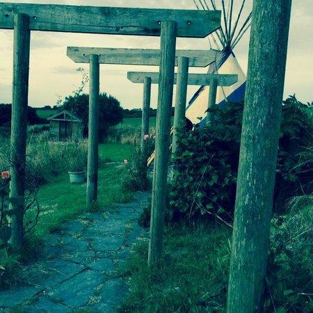 Plas-y-Wern: Garden