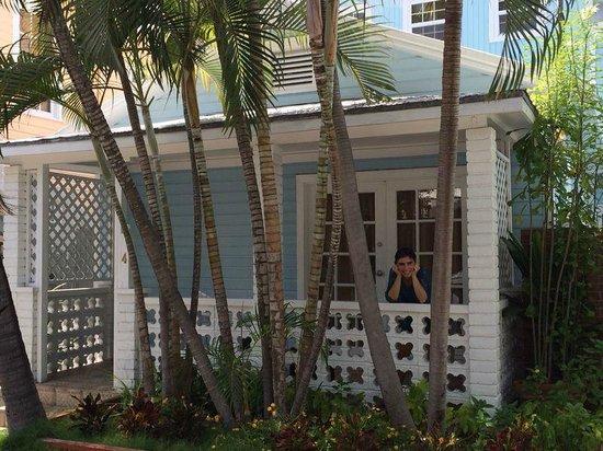 Douglas House : Outside