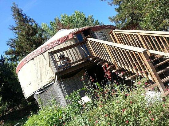 Solar Living Center: Our Workshop Yurt In The Intern Garden