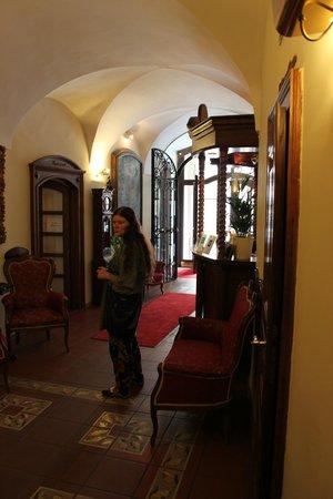 Hotel U Krale Karla (King Charles): Hotellet