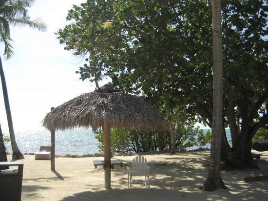 Lime Tree Bay Resort: The beach area