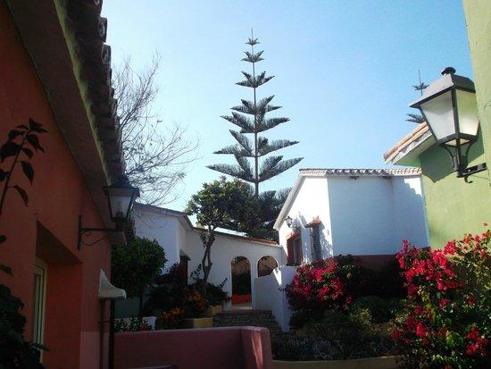 Marbella Playa Hotel : Desde la terraza del bungalow
