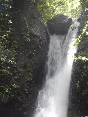 Viento Fresco Waterfall: Waterfall