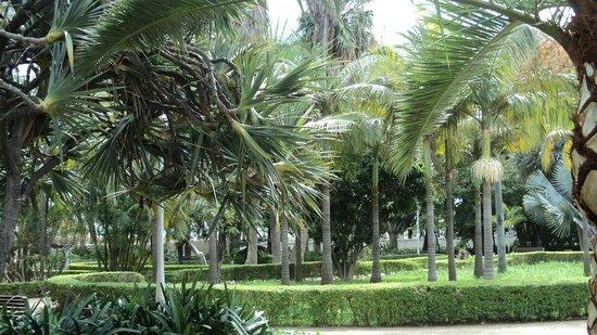 Parque de Málaga: Malaga Park