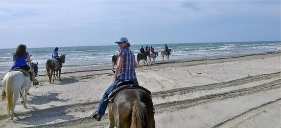 Horses On The Beach: Corpus Christi: So much fun!