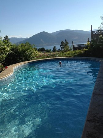 Apple d'or: beautiful view from saline pool