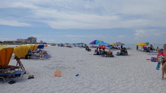 Saint Pete Beach: praia