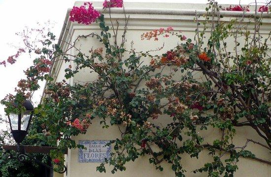 Barrio Historico : Calle de las flores