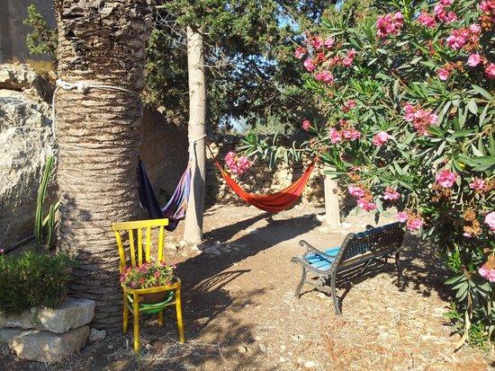 Casale Novello Bed & Breakfast : giardino