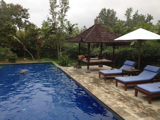 Alam Shanti: Pool area