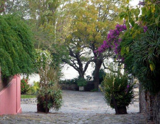 Barrio Historico : Barrio histórico y el río