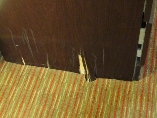 Holiday Inn Express & Suites Downtown Buffalo: A picture of the furniture