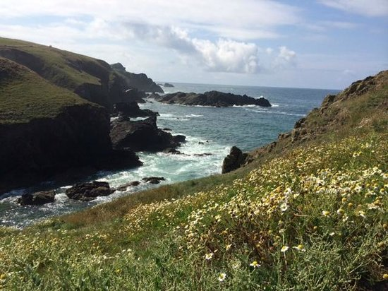 Western Discoveries Day Tours: Lizard Point