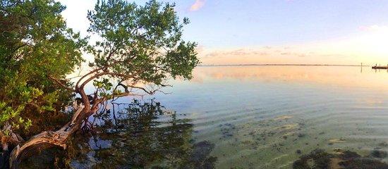 Hilton Key Largo Resort : Good Morning!
