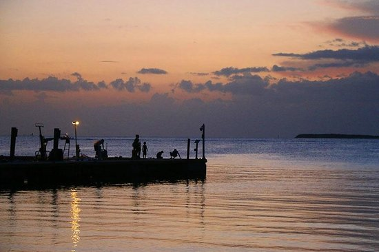 Hilton Key Largo Resort: Evening fishing on pier