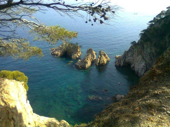 Hotel Delfin: Tossa de Mar