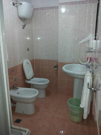 Hotel Alexander : Bathroom, very clean