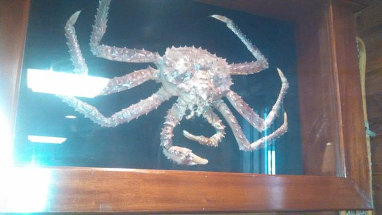 Uptown Motel: Alaskan King Crab