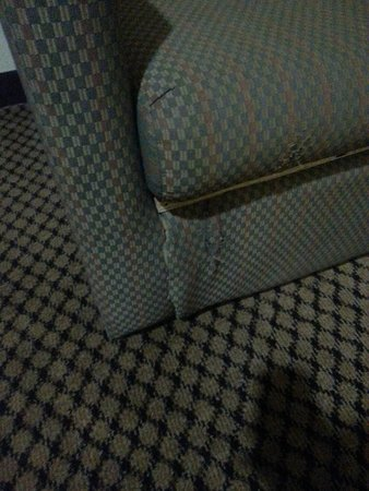 BEST WESTERN Executive Suites - Columbus East: Couch in suite