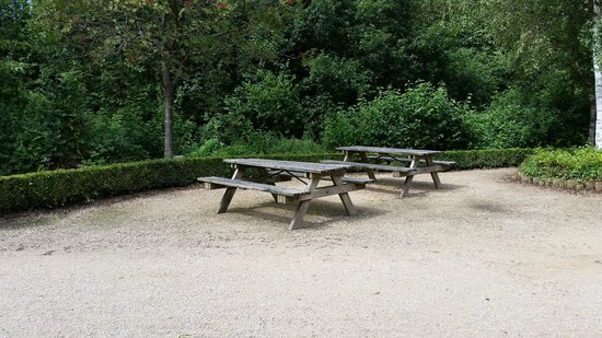 Sandwell Valley Country Park: Picnic area