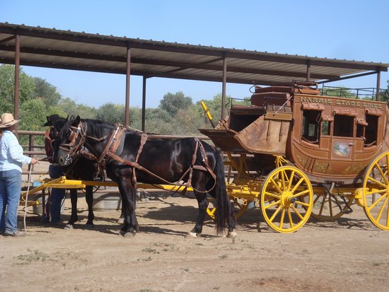 Harris Stage Lines: stagecoach 2
