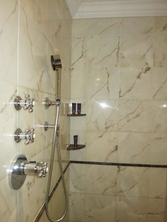 The Ritz-Carlton, Moscow : shower