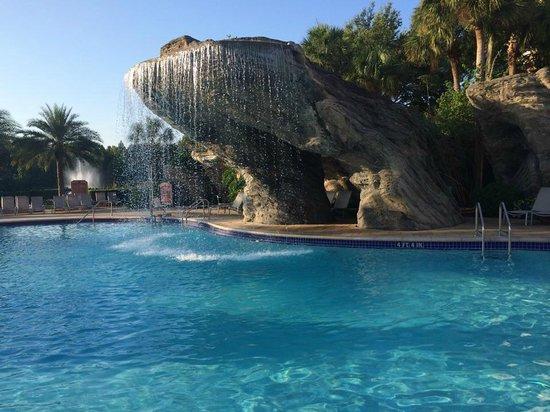 Hilton Grand Vacations at SeaWorld : Pool Area