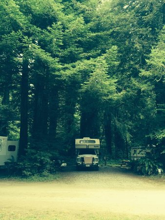 The Redwoods RV Resort: Our camper in our spot under the redwoods!
