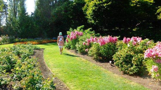 Queen Elizabeth Park: Queen Elisabeth Park, Vancouver - Canada