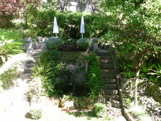 Gibraltar Botanic Gardens (The Alameda) : Gibraltar Botanic Gardens