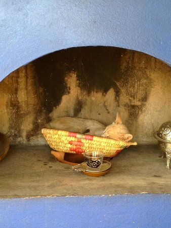 Dar el Ma: Rooftop stove