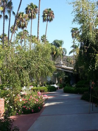 Town and Country San Diego: Awesome landscaping