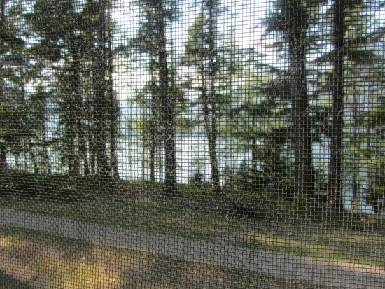 Lake McDonald Lodge: View from cabin