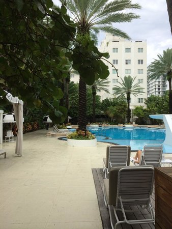 The Raleigh Miami Beach : Pool and hotel in background