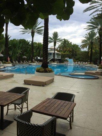 The Raleigh Miami Beach : Pool view